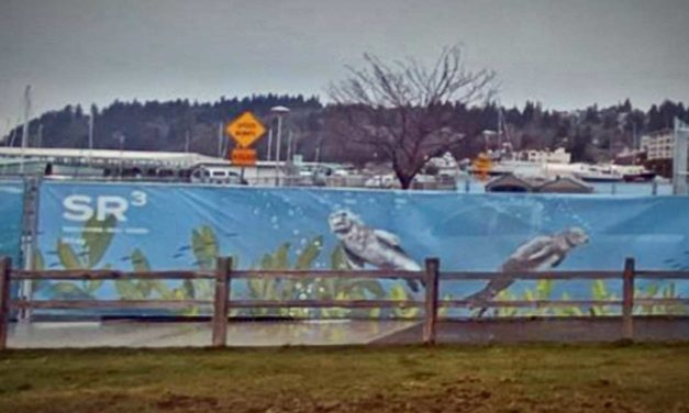 New public Art Mural by Allyce Wood installed at Des Moines Marina